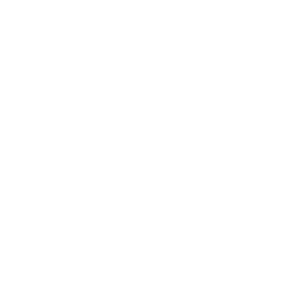 Attic Logo Virtual Sales Tools